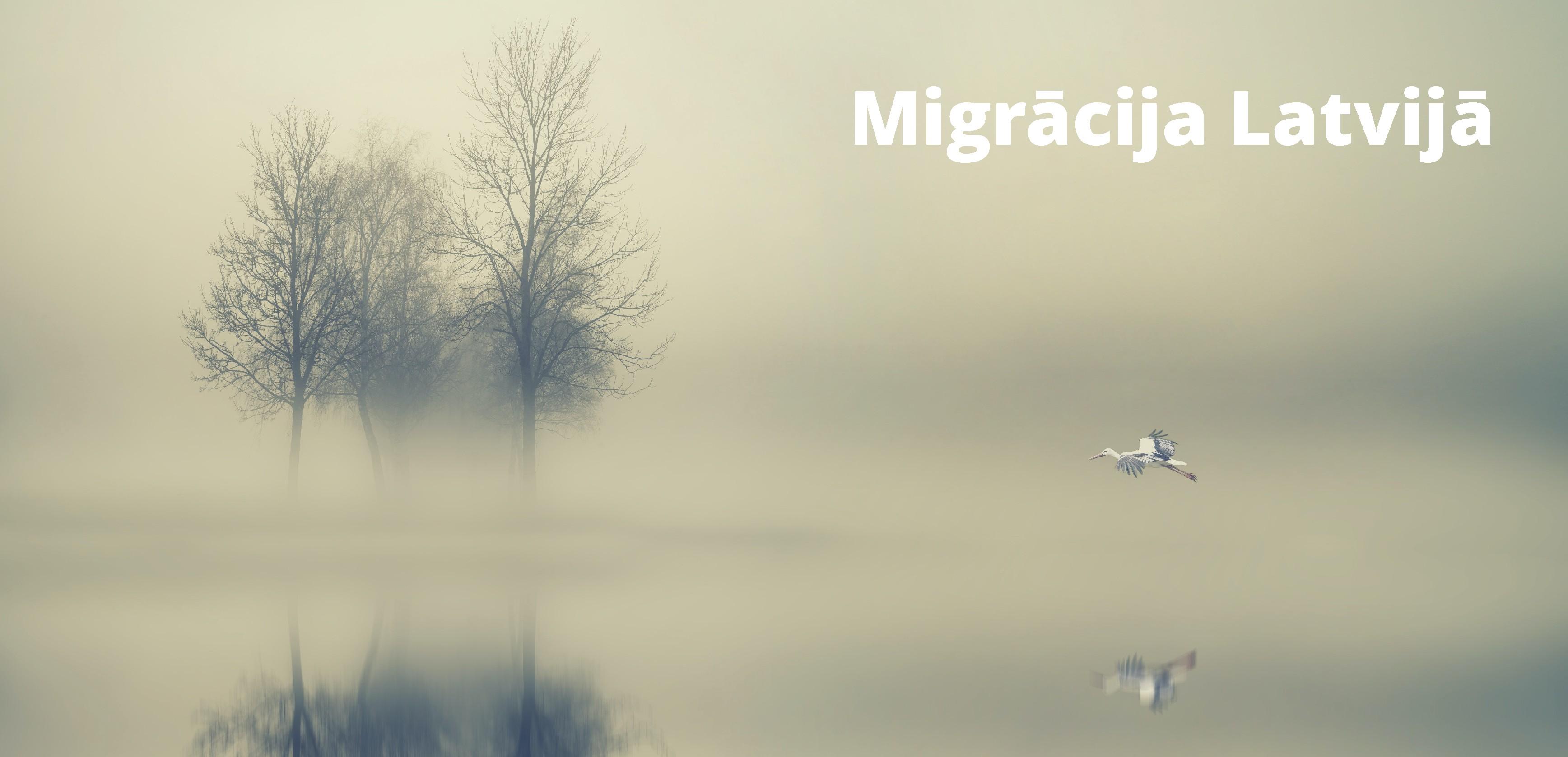 Saite uz vizualizācijas rīku Migrācija Latvijā